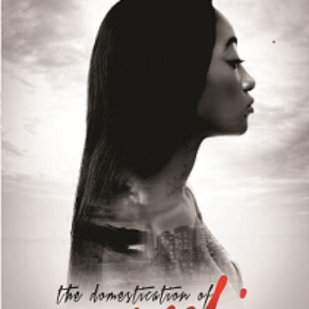 "Online Book Tour: Ifesinachi Okpagu's ""The Domestication of Munachi."""