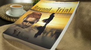 Online Book Tour: Beyond the Trial by Chigozie Anuli Mbadugha
