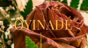 "Oyinade Episode 2: ""Wedding Guests"""