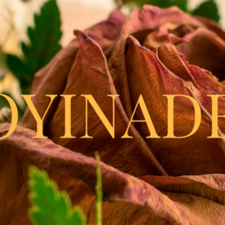 "Oyinade Episode 2.1: ""A Nobody…"""