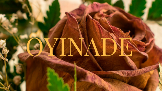 "Oyinade Episode 8: ""Blood and Fire."""